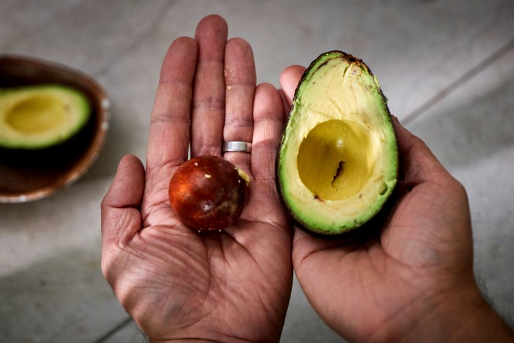 Image of SETTING THE STAGEYou just made an avo toast you feel...